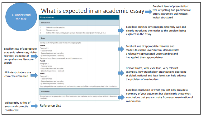 what is expected in an essay