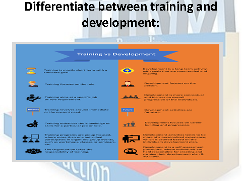 Differentiate between training and development
