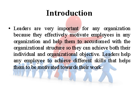 Introduction on leaders
