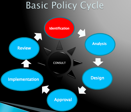 basic policy cycle