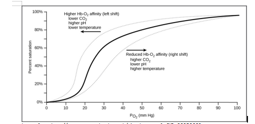 oxygen dissociation curve and factors that affect the release of oxygen from haemoglobin (Hb)